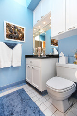 Blue wnad white small bathroom sink and toilet.