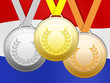 Medailles op nederlandse vlag bodem