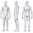 canvas print picture - Männlicher Körper - Seitenansichten