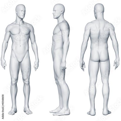 canvas print picture Männlicher Körper - Seitenansichten