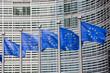 European flags in Brussels - 43574830