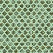 persimmon seamless pattern vector
