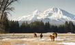 Fototapeten,ranch,skala,pferd,abgrasen