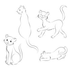 09 Katze Sammlung Outlines Malbild