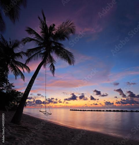 Plaża z palmami i huśtawka na zachodzie słońca, Malediwy wyspie