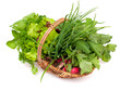 basket with herbs and vegetables
