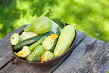 collection of zucchini and and marrow vegetables