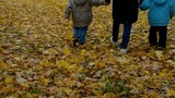 Grandmother and grandsons walking over leaves