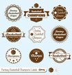 Vector Set: Vintage Style Fantasy Basketball Champions Labels