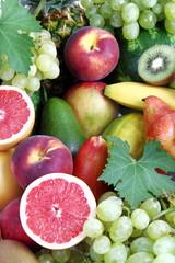 Frutta esotica e fresca