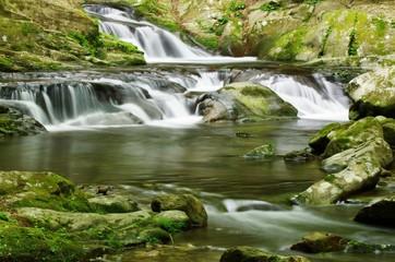 MOUNTAIN STREAM green 緑の渓流