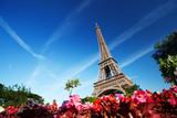 Fototapeta piękny - kwitnąć - Widok Miejski
