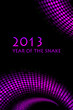 "2013 new year - vector ""snake"" background"