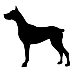 Vector illustration of dog