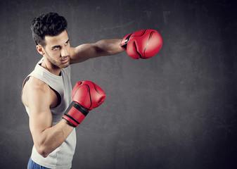 Boxer Background