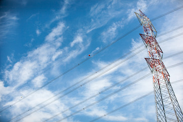 electricity tree on a blue sky