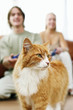 Couple playing video game console with the focus on their pet cat