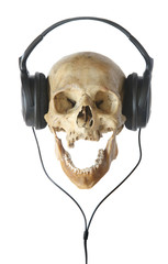 Human skull in earphones.