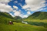 Small house in scandinavian panorama poster