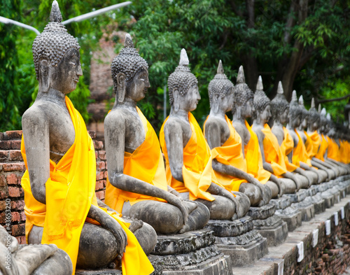 Buddha - 43653250