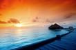 Fototapeten,sonnenaufgang,palme,meer,seelandschaft
