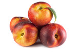 ripe nectarines fruit with green leafs