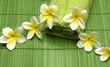 Fototapeten,die andere hochzeit,aroma therapy,bambus,schönheit