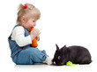 Smiling little girl eating a carrot and feeding rabbit with lett