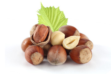 fresh hazelnuts and one green leaf