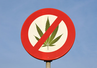 Red and white reflective prohibition sign with canabis leaf