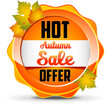 Hot Offer/ Autumn sale.