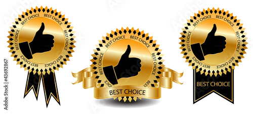 Best choice labels-vector