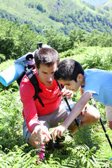 Father showing wild flowers to son in the mountain