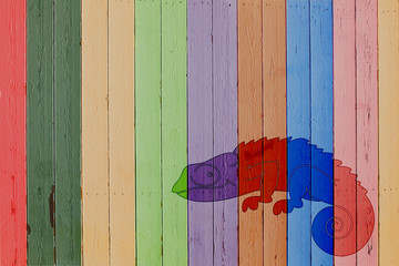 Wooden background with colorful chameleon