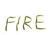 Chilli Fire