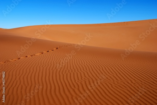 Fototapeten,fussspuren,sandstein,sanddünen,spuren