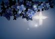 Fototapete Hintergrund - Blau - Nacht