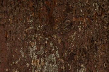 Altes gesrtichenes Holz