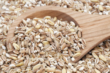 Mixed Healthy Grains