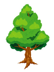 Large tree vector