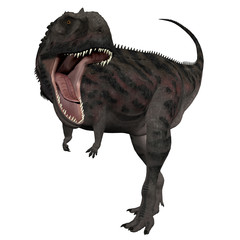 3D Isolated Dinosaur - Majungasaurus