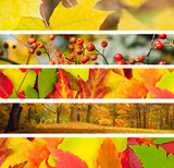 Fototapety Set of 5 Different Autumn's Banners
