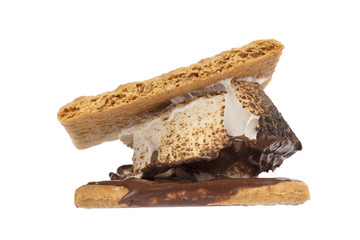 close up image of smore