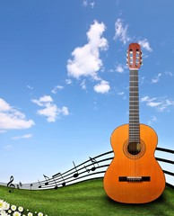 Guitar at the country
