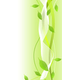 エコロジー