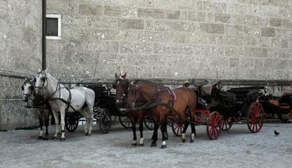 cabs in Salzburg