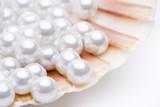 Perlen in einer Jakobsmuschel - 43740226