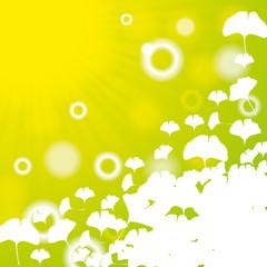 Abstract ginkgo biloba background