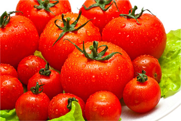 tomatoes over white