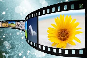 Pellicola films